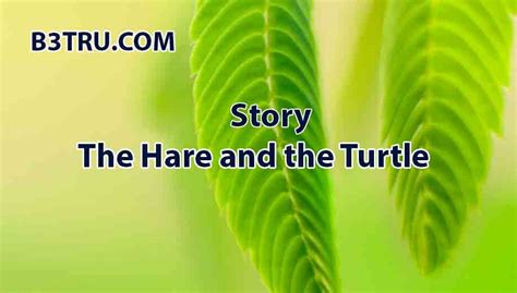 Write a story on the hare and the turtle | B3STRU story