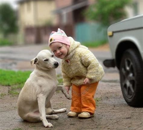 20 Best images about Cute Animals & Kids Pictures on